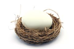 White egg on nest Stock Photo