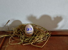 White egg on the nest and ghost shadow Royalty Free Stock Photos