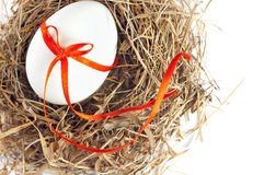 White egg in a nest of grass Stock Photos