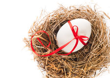 White egg in a nest of grass Royalty Free Stock Images