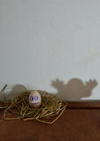 White egg on the nest and spooky shadow Stock Photo