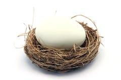 White Egg On Nest Stock Photo