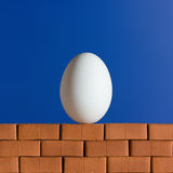 White egg on the red brick wall. On the blue background Royalty Free Stock Images