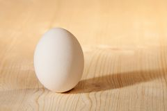 White egg on wooden table. White egg on bright  wooden table Stock Image