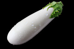 white-eggplant-black-background-42234958