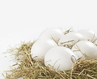 White eggs Royalty Free Stock Photo