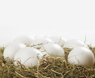 White eggs Royalty Free Stock Image