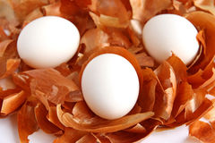 White eggs on the background of onion peel Royalty Free Stock Image