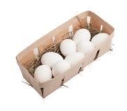 White eggs in box Stock Photo