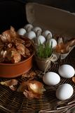 White eggs  in a box with a yellow onion peel  in a dish on a wicker tray prepared for coloring in organic dye royalty free stock photos