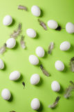 White eggs and feather on green background Royalty Free Stock Photos
