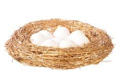 White eggs in golden nest Stock Image