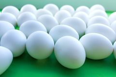 White eggs on a green background.side view royalty free stock images