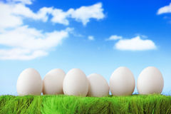 White eggs on green grass with blue sky Royalty Free Stock Images