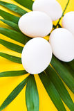 White eggs on a green leaf Royalty Free Stock Image