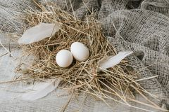 White eggs laying on straw. Over sackcloth stock images