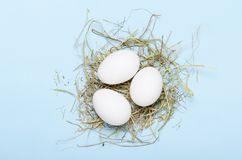 White eggs in a nest of hay on a blue background. Healthy food. Top view, flat lay. White eggs in a nest of hay on a blue background. Healthy food. Top view stock image