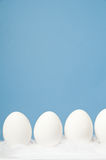 White eggs in a row with blue background. White eggs laying on white feathers with blue background Stock Photos
