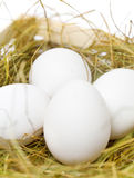 White eggs in the straw. White eggs in the yellow straw Stock Photos
