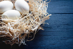 White eggs in a straw nest royalty free stock photography