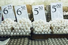 White eggs and trays with corresponding price signs at a wet market in the Philippines. Piles of heaped white eggs and trays with corresponding price signs at a royalty free stock photography