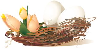White eggs with tulips in the nest stock illustration