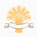 White elegant banner with a few ripe wheat ears. Vector decorative element, brand icon or logo template Stock Image