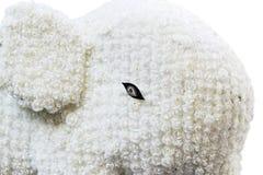 White elephant Stock Photography