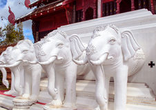 White elephant heads in Chiang Mai Royal Park. White elephant heads in a row Royalty Free Stock Photo