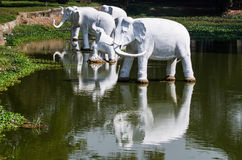 White elephant statues Royalty Free Stock Images