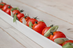 White elongated dish filled with cherry tomatoes and spring onio Royalty Free Stock Images