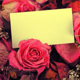 White empty card with dried roses Stock Photo