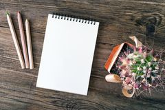 White empty notepad, notebook, wooden colored pencils and green royalty free stock photography