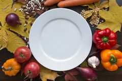 White empty plate with autumn harvest top view. Autumn background with various vegetables around white empty dish with top view Stock Image