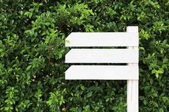 White empty wooden signboard in the garden with blank area for text.  stock photography