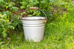 White enamelled bucket. weeding and cleaning of weeds in the garden stock photography