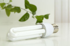 White energy saving bulb Royalty Free Stock Photography