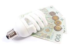 White energy saving bulb lying on heap of paper money Stock Image