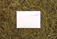 White envelope Stock Photo