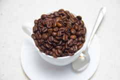 white för bönakaffekopp Förberedelse av kaffe royaltyfria bilder