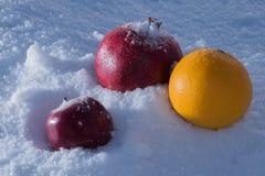 white för bakgrundsfruktmix arkivbild