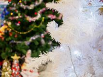 white för bakgrundsjultree Royaltyfri Fotografi