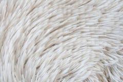 white för bakgrundspälstextur Royaltyfria Bilder