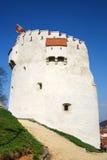 white för brasovromania torn Royaltyfri Foto