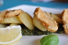 white för chipfiskplatta Royaltyfri Foto
