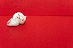 white för duvakuvertpar Arkivfoto