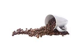 white för fält för djup för kopp för bakgrundsbönakaffe grund Arkivfoto