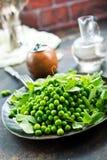 white för fröskida för ärtor för bakgrundskulor grön royaltyfria bilder