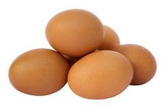 white för grupp för äggäggfokus Fotografering för Bildbyråer