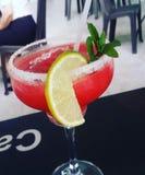 white för jordgubbe för alkoholbakgrundsmargarita arkivbilder